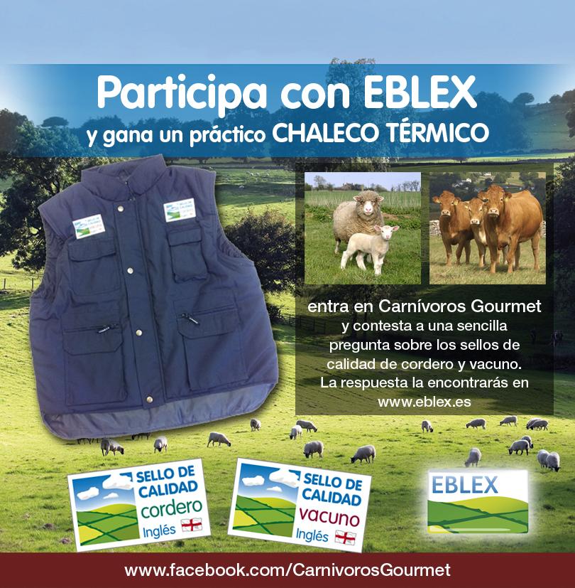 Imagen de la promoción de EBLEX en Facebook