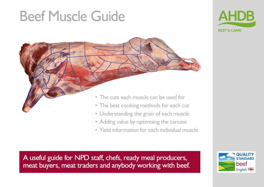 portada guía vacuno AHDB Beef & Lamb